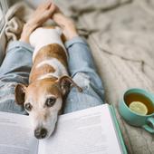愛犬との生活に関するアンケート【Vol.22】